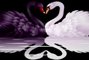 Любовь и Страх